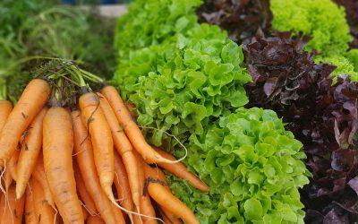 Beskydský farmářský trh 10.09.2020